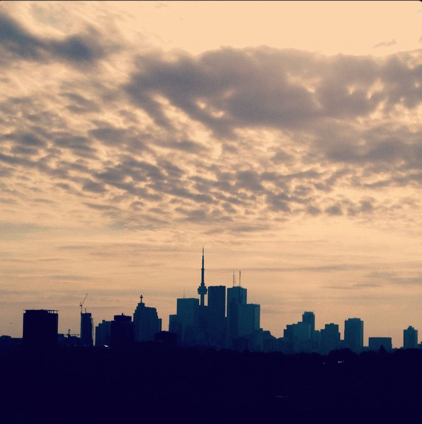 A view of downtown toronto from Riverside Park