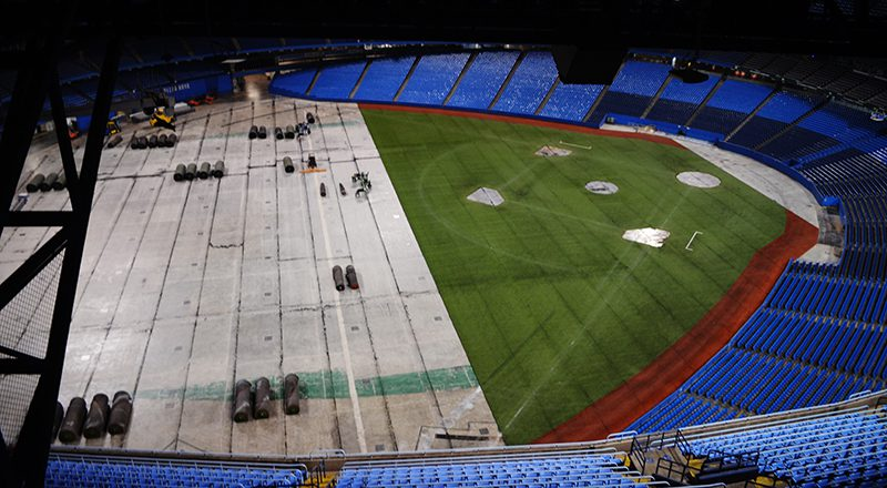 In The Heart Of Toronto Exclusive Rogers Centre Tour On